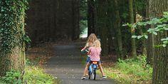 Boomhut huren in Drenthe om bijzonder te overnachten
