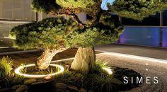 Striking curve lighting frames: Simes Miniround