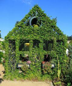 Resultado de imagen para green houses vine