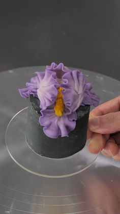Cake Decorating Frosting, Cake Decorating Techniques, Cake Decorating Tutorials, Cookie Decorating, Mini Cakes, Cupcake Cakes, Cupcakes, Bolo Floral, Floral Cake