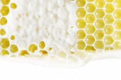 Woman who lives outside St. Paul photographs one found natural item everyday with her dslr, natural light, and a piece of white paper. I Love Bees, Honey Lemon, Weird And Wonderful, Bee Keeping, Honeycomb, Color Patterns, Natural Light, Mary, White Paper
