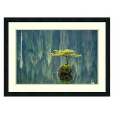 Amani Art Fairy Lake Bonsai by Tim Oldford - DSW3909562