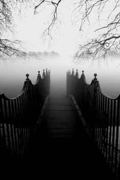 eerie black and white photos - Bing images Beautiful Places, Beautiful Pictures, Beautiful Eyes, Foto Art, Pics Art, Outdoor Fun, Belle Photo, Black And White Photography, Paths
