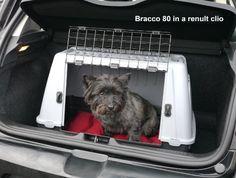 Nobby Transportbox für Hunde Skudo Car 90,  88 x 50 x 59 cm - http://www.transportbox-katzen.de/produkt/nobby-transportbox-fuer-hunde-skudo-car-90-88-x-50-x-59-cm/