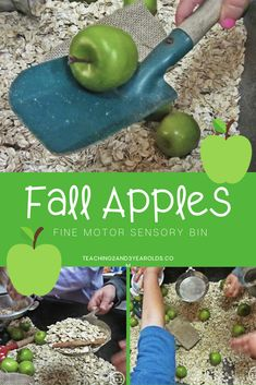 This fall apple sensory bin is not only for preschoolers, but it can easily be adapted for toddlers, too. Lots of hands-on play! #fall #apples #sensory #finemotor #toddler #preschool #age2 #age3 #teaching2and3yearolds