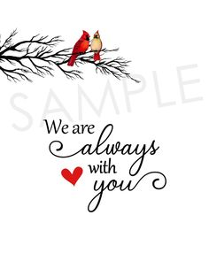 Red Cardinal Tattoos, Small Cardinal Tattoo, Red Bird Tattoos, Cardinal Birds Meaning, Mom Dad Tattoos, Prayer Signs, Sympathy Gifts, Sympathy Quotes, Bird Quotes