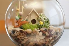 forget the rabbit and the little house, and this would be a nice indoor planting idea