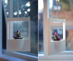 polaroid vase #decor #gardening