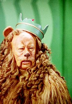 The Cowardly Lion ( a Ginger Feline) is not brave enough to stomp a motherfucker but is definitely thinking mad contemptuous shit about CJD. Wizard Of Oz Movie, Wizard Of Oz 1939, Ginger Kitten, Cowardly Lion, Land Of Oz, Yellow Brick Road, Judy Garland, Over The Rainbow, The Wiz