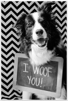 I woof you, too!
