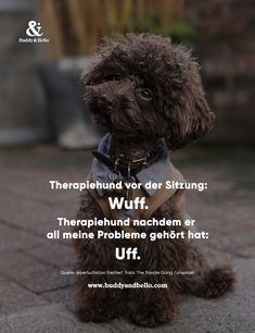 Arzt Pudel Damen T-Shirt Fun Shirt Spruch Geschenk Idee Hunde Besitzer Lustig
