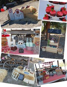 Barnyard (farm) Birthday Party