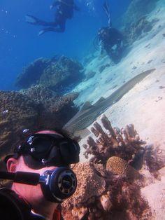 sub scuba diving selfie for eudi show eudiselfie contest