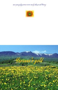 Pastures of Yavanna. The pastures of Yavanna were South of Valmar upon the plains of Valinor near the Woods of Oromë. These pastures were golden with the tall wheat of the gods and it was here Yavanna grew the corn from where the Eldar learned to make Lembas