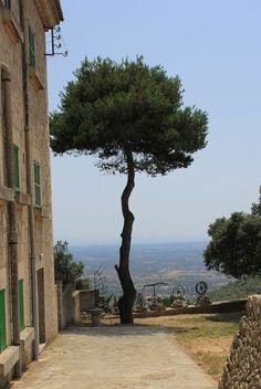 Cura de Randa, Mallorca, Spain