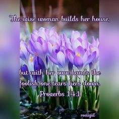 #Proverbs #Wisdom #WiseWomanBuilds #FaithfulGod #rosiigiil
