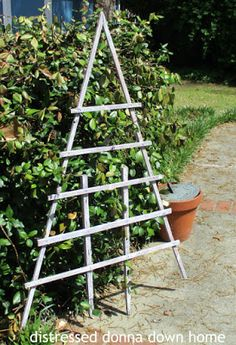 Quickies - A Rack and A Trellis