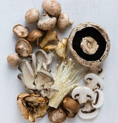 From oyster to portabella, this guide to mushrooms will show you how to identify, prep, store and cook with everybody's favorite fungi. Wild Mushrooms, Stuffed Mushrooms, Chefs, Survival Food, How To Cook Steak, Lunch Snacks, Fruit And Veg, Food Photography, Vegan Recipes