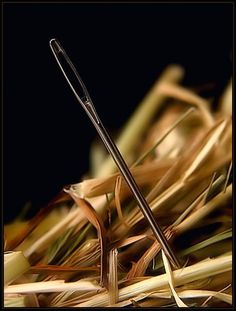 I've found my needle in an haystack…
