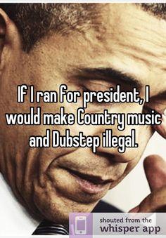 meet the president dubstep song