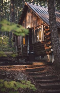 Nice tranquil log cabin in the woods