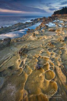 Sean Bagshaw - Shadow Lands - Shore Acres, Oregon
