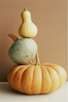 Oh my gourd! Here's how to spice up your recipes using gourds of all shapes and sizes.