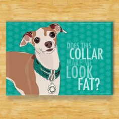 Italian Greyhound Dog Breed Magnet  Collar by PopDoggie on Etsy, $5.99