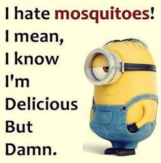New Funny Minions Pictures 039
