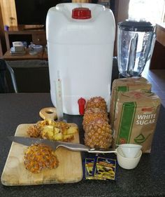 Let's Make Some Pineapple Beer! - Let's Make Some Pineapple Beer! : 9 Steps (with Pictures) – Instructables - Dog Beer Recipe, Apple Beer Recipe, Jamaican Ginger Beer Recipe, Homemade Ginger Beer, Homemade Wine, Easy Beer Recipe, Beer Recipes, Alcohol Recipes, Fiestas