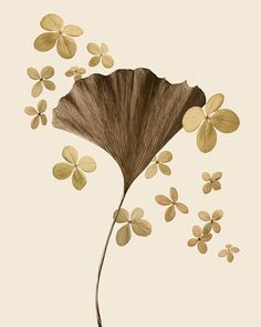 natural history warm tone ginkgo leaf botanical by FollowTheRaven, $20.00