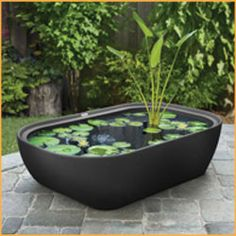 1000 Images About Patio Ideas On Pinterest Patio Pond Raised Patio And Gavin O 39 Connor