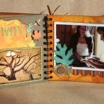 Outstanding mini albums...lots of ideas