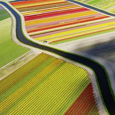 Follow our weekend countdown to the big reveal of the 2015 Traveler Photo Contest winners announcement LIVE! on @CBSThisMorning on Monday Aug. 3. Visit http://ift.tt/1FblQaG to check out this year's amazing entries.  Photograph taken in Voorhout Netherlands by Anders Andersson by natgeotravel