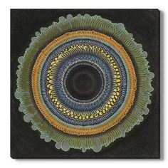 Gallery Direct Radial Pattern I by Stella Alesi Graphic Art on Wrapped Canvas Size: