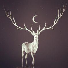 la luna que ama iluminar al venado