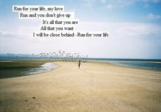 Run for your Life ~ The Fray