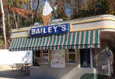 Bailey's Dairy Treat-Ice cream