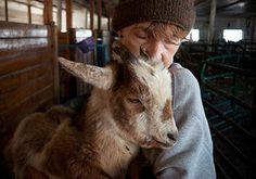 Massachusetts - Animal Sanctuary - Mendon, MA - Maple Farm Sanctuary