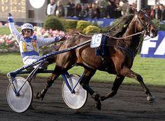 Varenne. La sua fama mondiale è dovuta ai tantissimi successi che è stato capace di portare a casa (ha vinto 62 delle 73 corse disputate). Ricordiamo, tra gli altri, il Derby Italiano di Trotto (Roma, 1998); Gran Premio delle Nazioni (Milano, 1999); Premio ENCAT (2001 e 2002); il Prix d'Amerique (Parigi, 2001 e 2002); il Gran Premio Lotteria di Agnano (Napoli, 2000, 2001 e 2002).