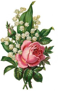 Light pink rose with lily of the valley. Maybe change the rose to a daffodil and also add some violets (Nik, Edies and Olivia birth flowers) Decoupage Vintage, Vintage Diy, Vintage Cards, Vintage Postcards, Decoupage Art, Victorian Flowers, Vintage Flowers, Vintage Floral, Victorian Crafts