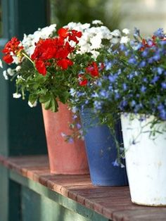 Preparazione per la festa del Memorial Day annuale – Best White And Blue Flowers, Red And White, Fresh Flowers, July Flowers, Potted Flowers, Flowers Garden, Summer Flowers, Yellow Roses, Potted Plants