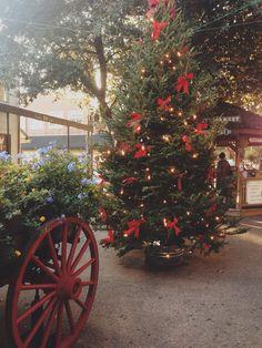 Historical Downtown Savannah