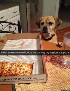 Or the way I look at pizza...