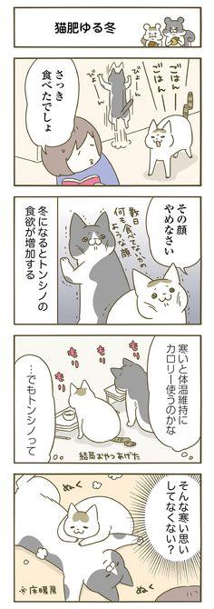 トンちゃんとシノさん