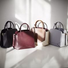 The Auxiliary Bega Satchel bag by aritzia is everything
