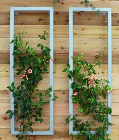 modern silver steel wall trellis vertical garden