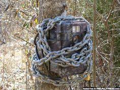 Trail Camera Security (pics.)