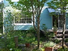 三養基郡 S邸 - 雑木の庭 武蔵野|リフォームガーデンクラブ