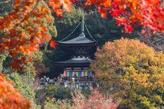 The two story pagoda at the Eikan-dō Zenrin-ji (永観堂禅林寺) during the autumn season of 2013 in Kyoto!